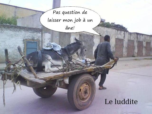 Le luddite et son âne