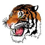 Tigre en SVG